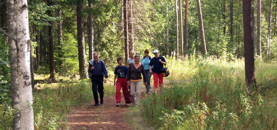 Ihmisiä kävelemässä metsässä.