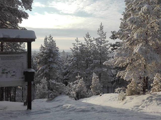 Hyvä keli hiihdellä. #harjureitti