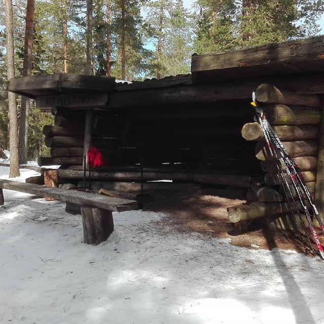 Lumisella laavulla metsässä.